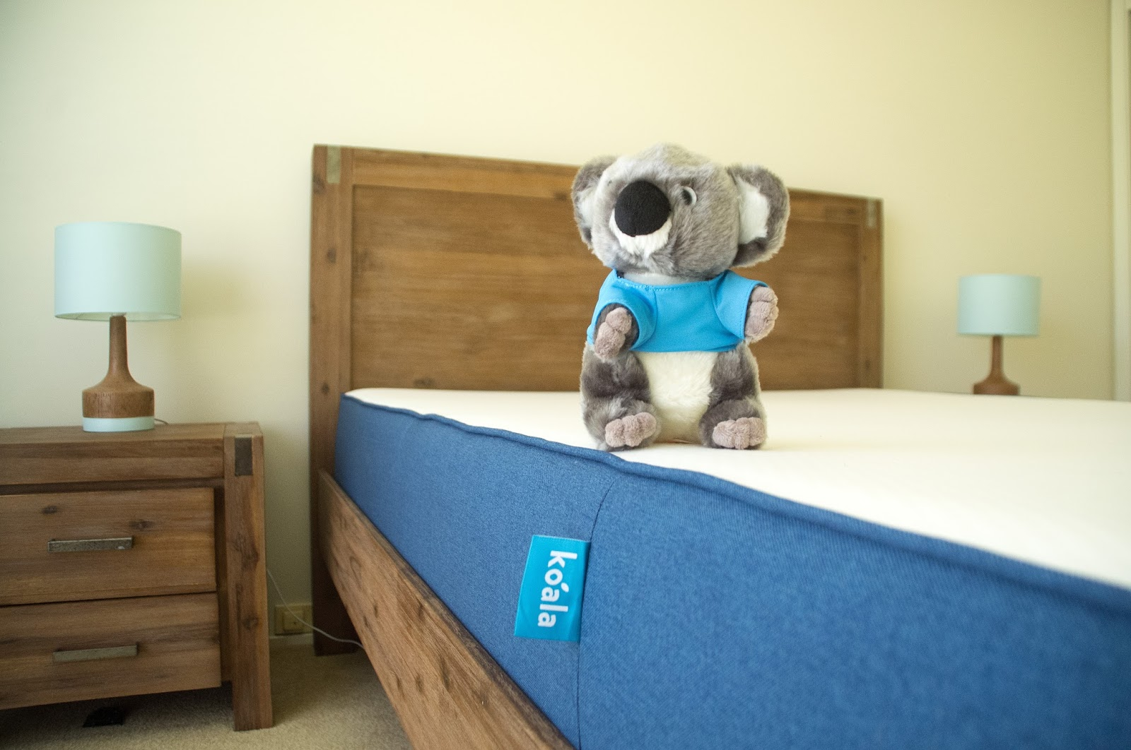 Koala Vs Ecosa Mattress Comparison Exclusive Coupons